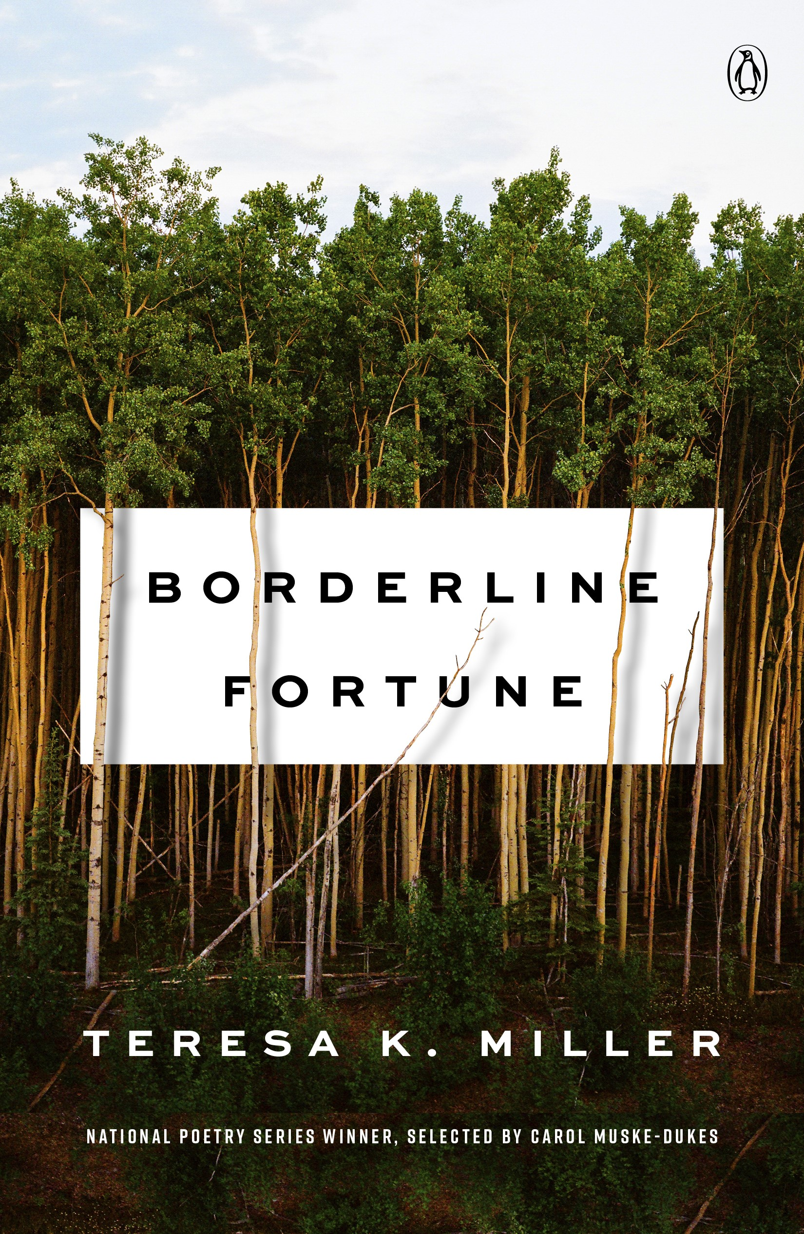 Borderline Fortune_final cover